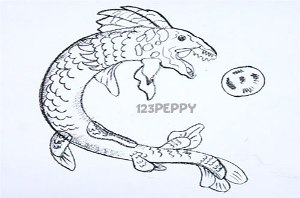 нарисовать пошагово морского дракона карандашом, рисунок  морского дракона, контурный рисунок,  черно-белый