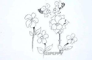 нарисовать пошагово пчел на цветке карандашом, рисунок  пчел на цветке, контурный рисунок,  черно - белый