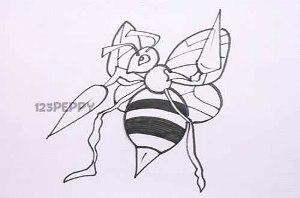 нарисовать пошагово пчелу карандашом, рисунок  пчелы, контурный рисунок,  черно-белый