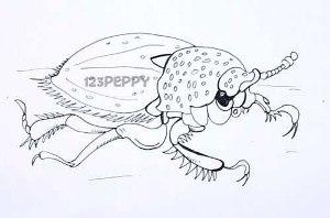нарисовать пошагово большого жука карандашом, рисунок  большого жука, контурный рисунок,  черно- белый
