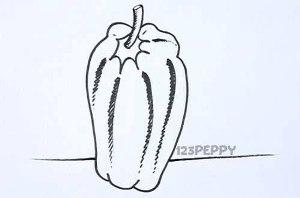 нарисовать пошагово перец карандашом, рисунок  перца, контурный рисунок,  черно-белый