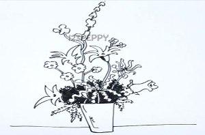 нарисовать пошагово домашнее растение карандашом, рисунок  домашнего растения, контурный рисунок,  черно-белый
