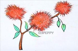 нарисовать пошагово хвощ карандашом, рисунок  хвоща, контурный рисунок,  цветной