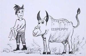 нарисовать пошагово корриду карандашом, рисунок  корриды, быка, тореодора, контурный рисунок,  черно-белый