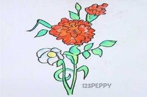 нарисовать пошагово рождественскую розу карандашом, рисунок  рождественской розы, контурный рисунок,  цветной