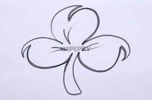 нарисовать пошагово клевер карандашом, рисунок  клевера, контурный рисунок,  черно-белый