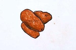 нарисовать пошагово финики карандашом, рисунок  фиников, контурный рисунок,  цветной