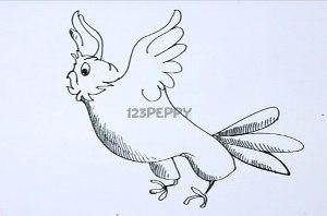 нарисовать пошагово летящего попугая карандашом, рисунок  летящего попугая, контурный рисунок,  черно-белый