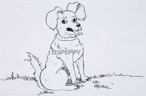 нарисовать пошагово сидящую собаку карандашом, рисунок  сидящей собаки, контурный рисунок,  черно-белый