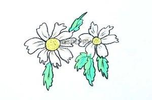 нарисовать пошагово простой цветок карандашом, рисунок  простого цветка, контурный рисунок,  цветной