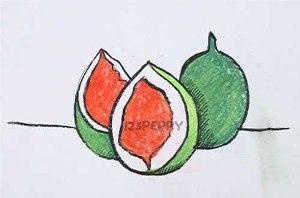 нарисовать пошагово плоды фигового дерева карандашом, рисунок  плодов фигового дерева, контурный рисунок,  цветной