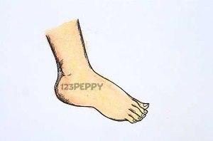 нарисовать пошагово ногу карандашом, рисунок  ноги, контурный рисунок,  цветной