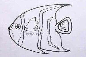 нарисовать пошагово красивую рыбку карандашом, рисунок  красивой рыбки, контурный рисунок,  черно-белый