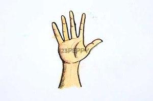 нарисовать пошагово руку карандашом, рисунок  руки, контурный рисунок,  цветной