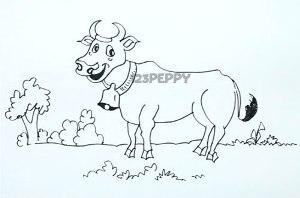 нарисовать пошагово веселую корову карандашом, рисунок  веселой коровы, контурный рисунок,  черно- белый