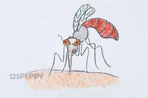 нарисовать пошагово комара карандашом, рисунок  комара, контурный рисунок,  цветной