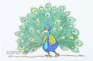 нарисовать пошагово красивого павлина карандашом, рисунок  красивого павлина, контурный рисунок,  цветной
