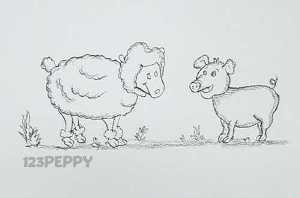 нарисовать пошагово овцу и свинью карандашом, рисунок  овцы и свиньи, контурный рисунок,  черно- белый