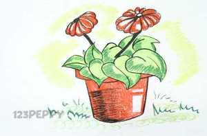 нарисовать пошагово цветы в горшке карандашом, рисунок  цветов в горшке, контурный рисунок,  цветной