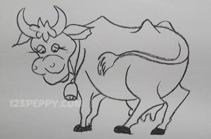 нарисовать пошагово корову карандашом, рисунок  коровы, контурный рисунок,  черно- белый