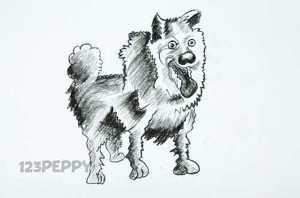 нарисовать пошагово сумасшедшую собаку карандашом, рисунок  сумасшедший собаки, контурный рисунок,  черно- белый