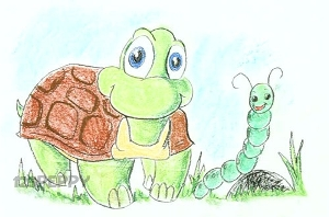 нарисовать пошагово черепашку карандашом, рисунок  черепашки, контурный рисунок,  цветной