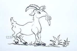нарисовать пошагово козла карандашом, рисунок  козла, контурный рисунок,  черно- белый