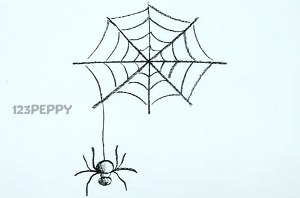 нарисовать пошагово паука и паутину карандашом, рисунок  паука и паутины, контурный рисунок,  черно- белый
