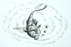 нарисовать пошагово большую рыбку карандашом, рисунок  рыбки кои, контурный рисунок,  черно-белый