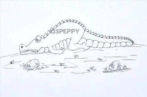 нарисовать пошагово грустного крокодила карандашом, рисунок  грустного крокодила, контурный рисунок,  черно - белый