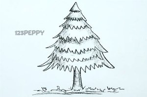нарисовать пошагово елку карандашом, рисунок  елки, контурный рисунок,  черно- белый