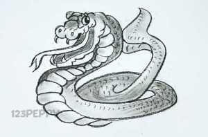 нарисовать пошагово змею кобру карандашом, рисунок  змею кобру, контурный рисунок,  черно - белый
