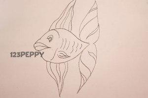 нарисовать пошагово золотую рыбку карандашом, рисунок  золотой рыбки, контурный рисунок,  черно-белый