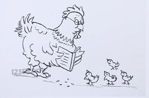 нарисовать пошагово курицу с цыплятами карандашом, рисунок  курицы с цыплятами, контурный рисунок,  черно- белый