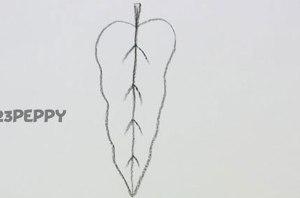 нарисовать пошагово лист дерева карандашом, рисунок  листа дерева, контурный рисунок,  черно - белый