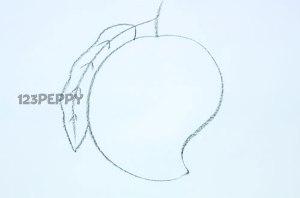 нарисовать пошагово спелое манго карандашом, рисунок  спелого манго, контурный рисунок,  черно-белый