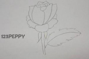 нарисовать пошагово розу карандашом, рисунок  розы, контурный рисунок,  черно-белый