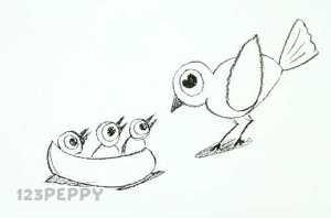 нарисовать пошагово птицу с птенцами карандашом, рисунок  птицы с птенцами, контурный рисунок,  черно - белый