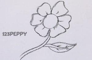 нарисовать пошагово распустившийся цветок карандашом, рисунок  распустившегося цветка, контурный рисунок,  черно- белый