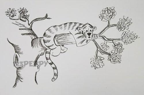 нарисовать пошагово тигра на дереве карандашом, рисунок  тигра на дереве, контурный рисунок,  черно - белый