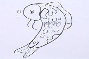 нарисовать пошагово усатую рыбку карандашом, рисунок  усатой рыбки, контурный рисунок,  черно-белый
