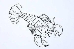нарисовать пошагово омара карандашом, рисунок  омара, контурный рисунок,  черно-белый
