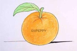 нарисовать пошагово апельсин карандашом, рисунок  апельсина, контурный рисунок,  цветной