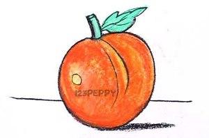 нарисовать пошагово персик карандашом, рисунок  персика, контурный рисунок,  цветной