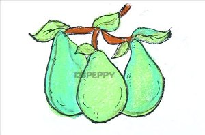 нарисовать пошагово груши карандашом, рисунок  груш, контурный рисунок,  цветной