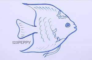 нарисовать пошагово ангельскую рыбку карандашом, рисунок  ангельской рыбки, контурный рисунок,  черно-белый