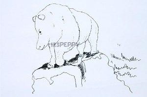 нарисовать пошагово полярного медведя карандашом, рисунок  полярного медведя, контурный рисунок,  черно - белый