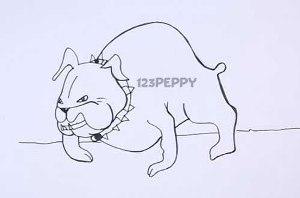 нарисовать пошагово злую собаку, бульдога карандашом, рисунок  злого бульдога, контурный рисунок,  черно-белый
