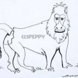 бабуина