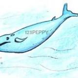 синего кита
